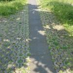Bild des Weges zum Eingang